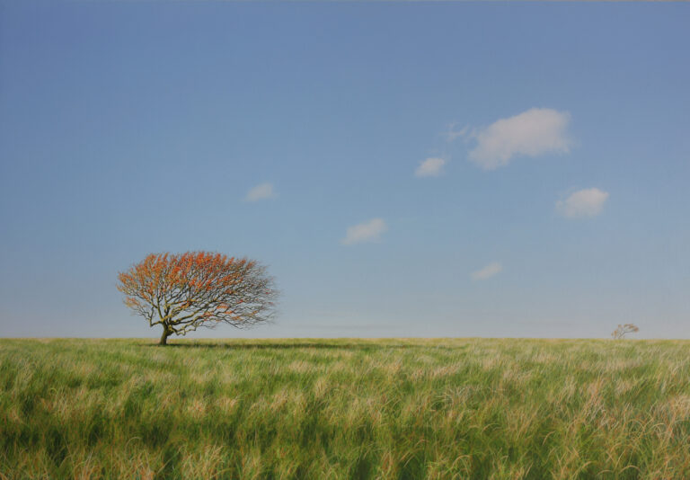 May Tree in Autumn